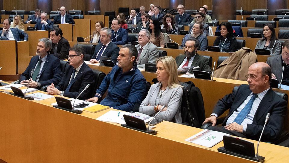 Comisión Congreso. Teresa López Vox